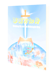 3d_book10chinese