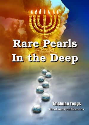 Book4 Manna 1: Rare Pearls in the Deep